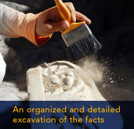 An organized and detailed excavation of the facts